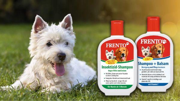 Frento Hundeshampoo