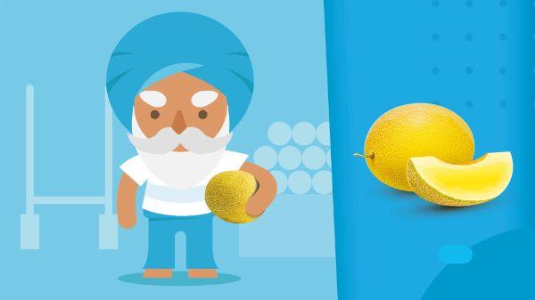 Honigmelone - marktguru Sommerspiele 2021