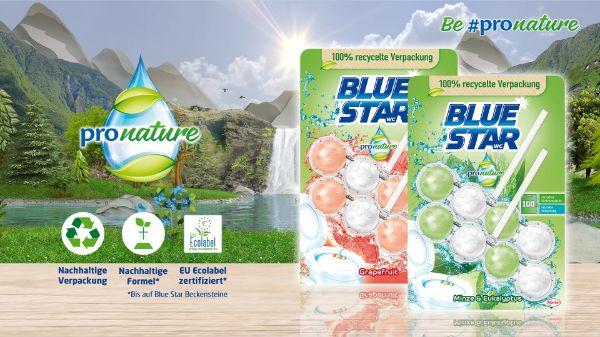 BlueStar ProNature WC Beckensteine