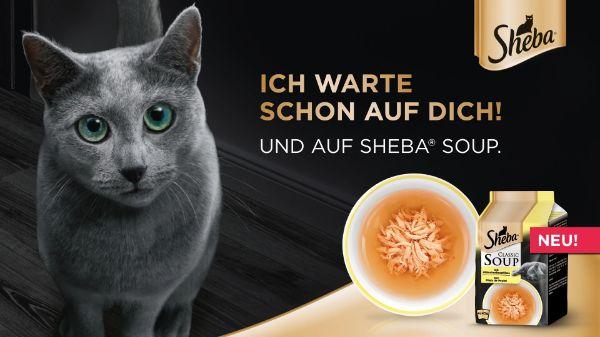 Sheba Classic Soup