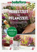 bellaflora Prospekt