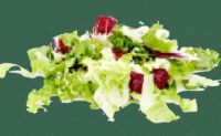 Salat De Luxe Mix von Vitana