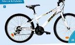 Mountainbike Sport 20 von avigo
