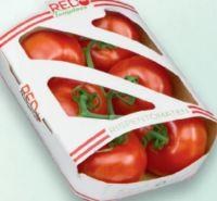 Rispentomaten von Red Tomatoes