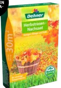 Herbstrasennachsaat von Dehner