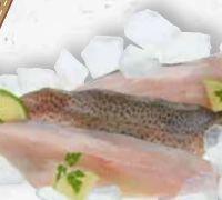 Regenbogenforellenfilet von Fischzucht Güfel