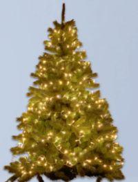 LED-Lichterkette von Tarrington House