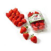 Erdbeeren von Da komm' ich her
