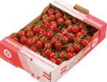 Cherrytomaten Frieda von Zeiler