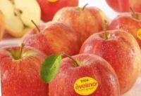 Äpfel von Evelina