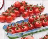 Bio-Cherrytomaten von Spar Natur pur
