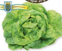 Kopfsalat von Spar