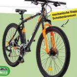 MTB Draco Bike von Styria