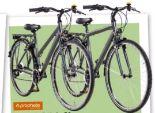 Trekkingbike Entdecker 7.0 von Prophete