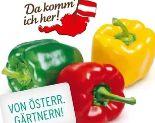Tricolore Paprika von Da komm' ich her