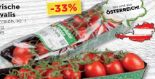 Tomaten Mini-Ovalis