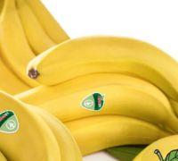Bananas von SPAR Bananas