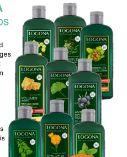 Bio Shampoo von Logona