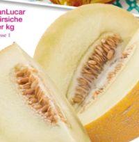 Galia Melone von SanLucar