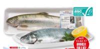 Regenbogenforelle von Spar Fisch-Genuss