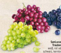 Trauben von SanLucar