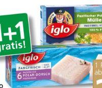 Polar-Dorsch Müllerin von Iglo