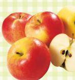 Gala Äpfel von Eferdinger