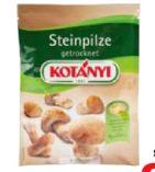 Steinpilze von Kotányi