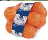 Orangen von Horeca Select