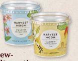 Bio-Cashew-Joghurt von Harvest Moon
