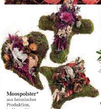 Moospolster