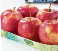 Apfel-Gala von Steiermark Genuss Apfel