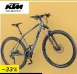 Mountainbike Peak Air von KTM