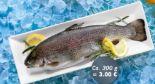 Forelle von Fischerstolz