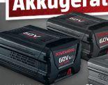 Akku P60B2 von Powerworks