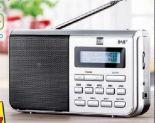 Portables Digitalradio von Dual