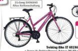 Trekking-Bike XT 6019AL von Dinotti