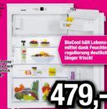 Einbaukühlschrank  IK 1624-20 von Liebherr