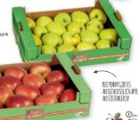 Äpfel von Ich bin Österreich