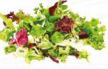 Salat Tages Mix von Vitana