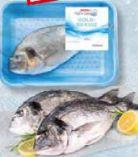Goldbrasse von Spar Fisch-Genuss