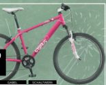 Mountainbike Dirt Pro von Cygnus