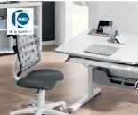 Schreibtisch Diego von Paidi