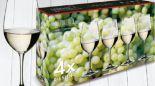 Riesling-Set Vinum von Riedel