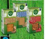 BIO-Fairtrade Gewürze von Natur Aktiv