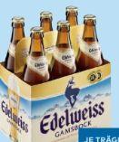 Gamsbock von Edelweiss