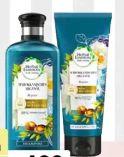 Shampoo von Herbal Essences