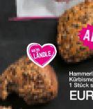 Kürbismehrkorn-Brötchen von Hammerl Landbäckerei
