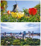Holland Zur Tulpenblüte Busreise von Hofer-Reisen