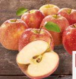 Elstar Äpfel